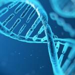 Analiza DNA w niewiele ponad godzinę? Już możliwa!