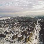 Ptaki żyjące w Czarnobylu… cieszą się wyśmienitym zdrowiem