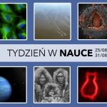 Tydzień w Nauce [25/08-31/08]