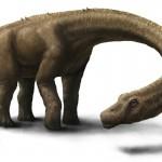 Nowy gigantyczny dinozaur z Ameryki Południowej