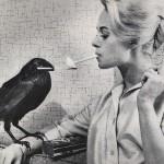 Po co ptakom papierosy?