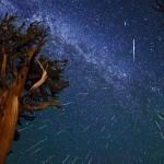 Już dziś na naszym niebie pojawią się Perseidy. Jak je oglądać?